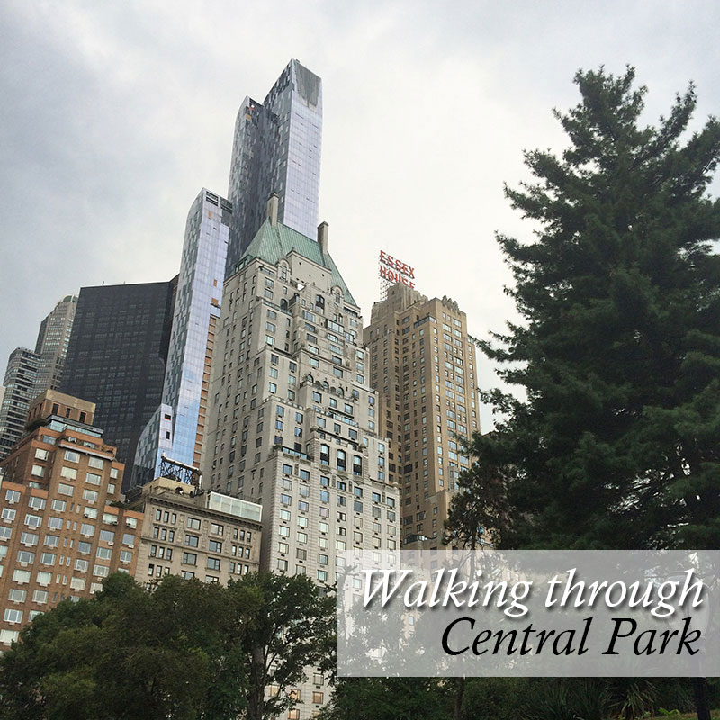 Views from Central Park in New York