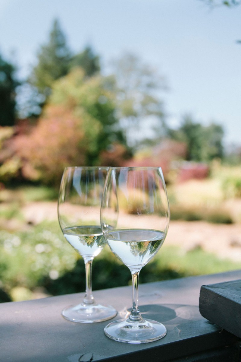 Sonoma Valley Wine Tasting